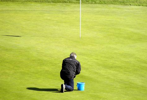 Course maintenance – Spring 2020